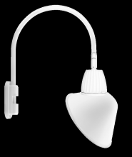 "RAB Lighting GN5LED26YSACW - GOOSENECK POLE 20"" HIGH, 19"" FROM POLE 26W WARM LED 15"" ANGLED CONE SHADE SPOT REFLECTOR"